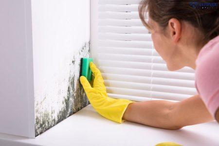 Πώς να απαλλαγείτε από τη μούχλα στους τοίχους